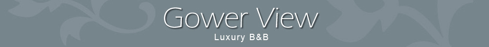 Gower View Bed and Breakfast Pembrokeshire